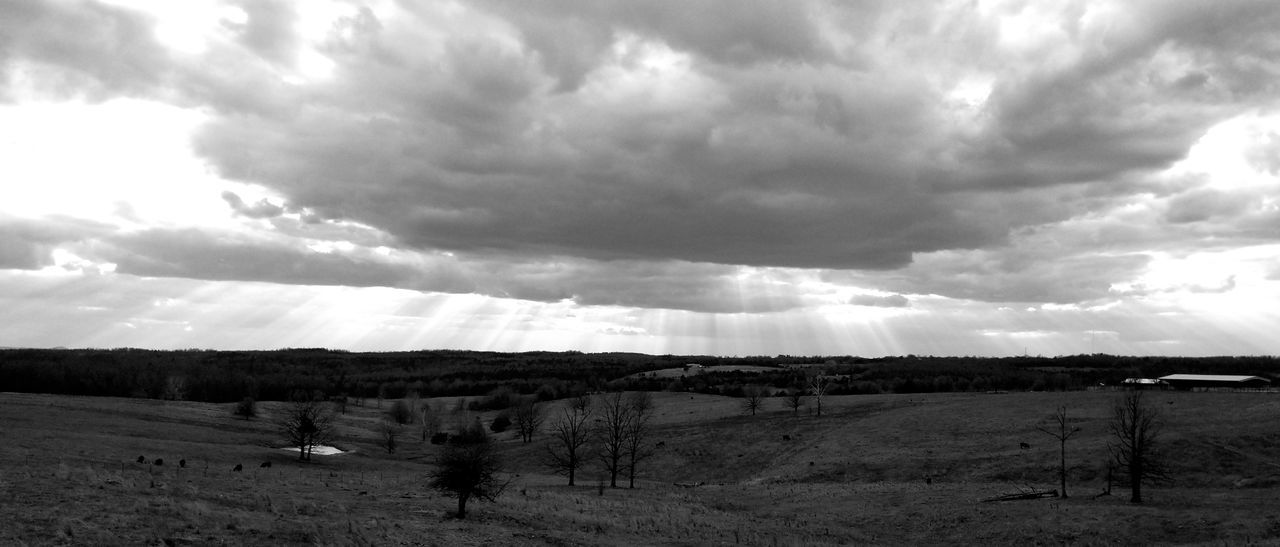 beautiful B&W Eyem Best Shots Tranquility Beaitful Nature This Week On Eyeem EyeEm Best Shots Cow Fence Post Thru The Fence Country Living Rural Scene Oil Pump Storm Cloud Agriculture Sky Landscape Cloud - Sky Forked Lightning Thunderstorm Storm Extreme Weather Farmland Dramatic Sky Fence
