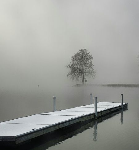 Landscape Nature Foggy Weather Lake View