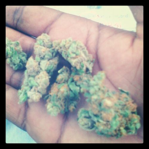 Sumen to balance the lows ....... Smokeweed 420 Diwork Mellow smile peace love unity respect plur dopestdope purps ogkush