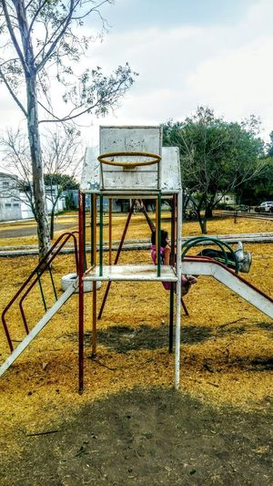 PARK Absence Bare Tree Day Grass Nature No People Outdoor Play Equipment Outdoors Park - Man Made Space Playground Sky Tree