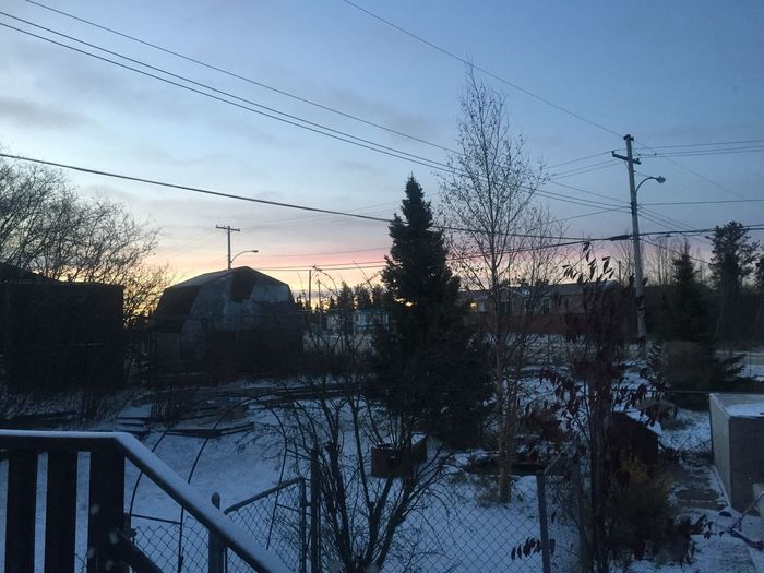 Morning From My Window Winter Cold Temperature Snow Power Line  Trees And Sky Beauty In Nature No People Landscape EyeEmNewHere Lost In The Landscape