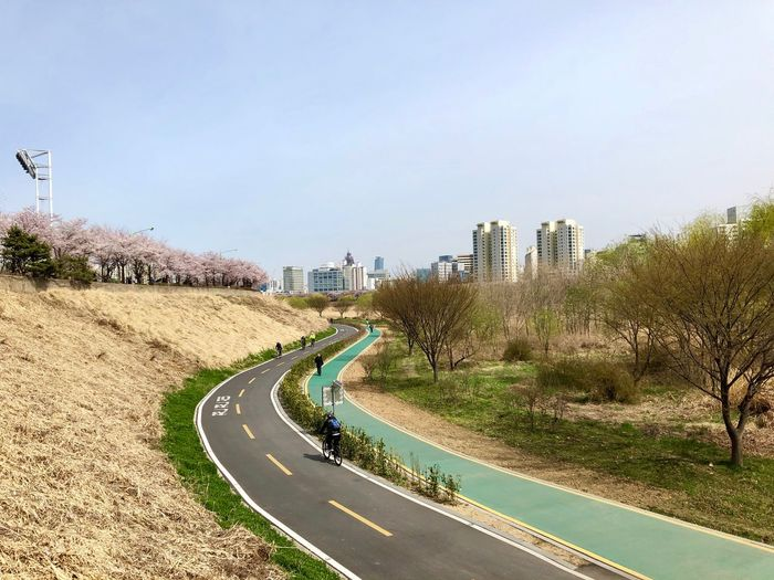 People ride bicycles along the Anyangcheon bicycle road April 7, 2019 Curved Road Cherry Blossom Spring Bicycle Anyangcheon Sky Road Transportation Day Nature Plant City Tree Sign Direction Clear Sky Curve Land Vehicle Architecture Symbol Marking The Way Forward Mode Of Transportation Outdoors Copy Space