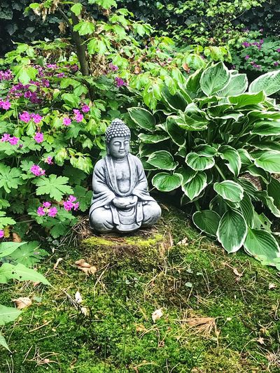 Yoga Peaceful Tranquility Garden Boeddha Buda Plant Green Color Representation Sculpture Growth Art And Craft No People Beauty In Nature Sunlight Outdoors Craft Plant Part Grass High Angle View Creativity Nature Statue Leaf Day EyeEmNewHere Focus On The Story