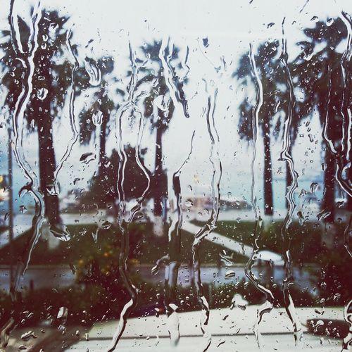 Beautiful Rain Spring Rain RainDrop