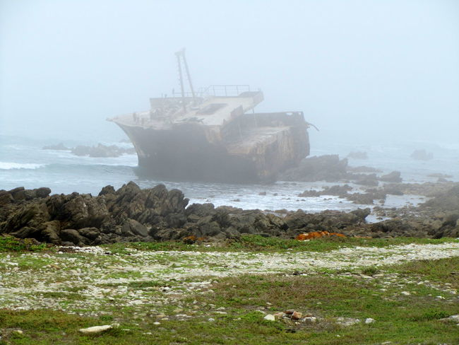 Cape Agulhas, Western Cape ~ Cape Agulhas  Day Fog Leaning Listing Mist Misty Morning Nautical Vessel The Great Outdoors - 2017 EyeEm Awards Ocean On The Rocks Outdoors Rocks Rusty Metal Sea Ship South Africa Wave Weather Western Cape Wreck Wreckage Neighborhood Map Neighborhood Cape Province