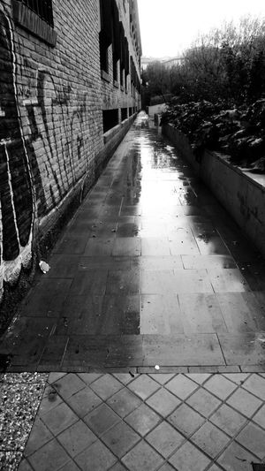 Architecture Building Exterior Built Structure City The Way Forward Direction Building Footpath No People Street Day Diminishing Perspective Outdoors Wall Wet Sidewalk Paving Stone Plant Residential District Alley Tiled Floor Monochrome Blackandwhite Reflection Streetphotography