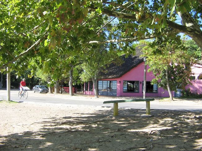 A solitary bycicle rider at Carmelo Beach in a sunny day Architecture Building Exterior Built Structure Bycicle Bycicle Rider Day Green Color Nature Outdoors Pink Color Sand Shade Solitary Rider Summer Sunny Day Tree Tree Branches Woman