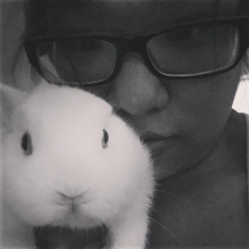 Doesnt recognize me w my glasses on 😂🐰 Olaf TooCute Hessuchalittleflirt Kisses SoCurious Mybaby Iloveyoualways Binky Bunbun Netherlanddwarfrabbit Squishy