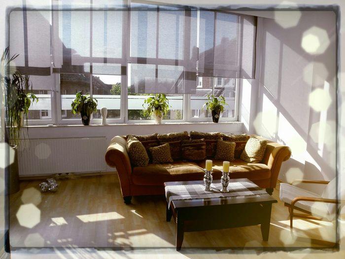 Relaxing Enjoying Life Home My Home Livingroom City Life Zuhause Window Sunny Day