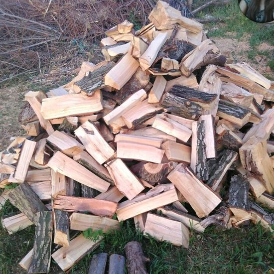 Wood Wood Pile