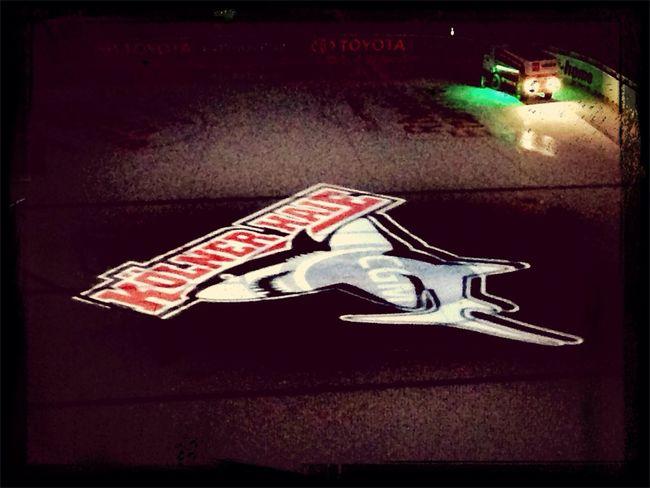 KEC Kölner Haie Haifischfütterung