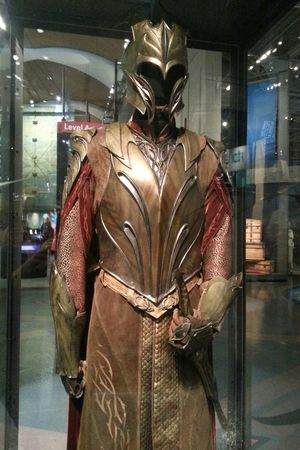 Middle Earth The Hobbit Costumes Movie Props Taking Photos Elf Soldier. Enjoy :)