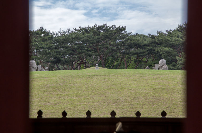 Beauty In Nature Choseon Dynasty Cloud Cloud - Sky Cloudy Day Frame In Frame Green Color Growth Historical Place Jeongneung Landscape Lifestyles Nature Royal Tombs Scenics Seonjeongneung Sky Tomb Of King Tranquil Scene Tranquility Tree