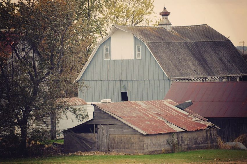 Unused outbuildings. Nikon Countryside Illinois MidWest Rural Scene Blue Barn Misty Vintage Style Rusty Roof Chicken Coop Farm Life Architecture Built Structure Building Exterior Building House Nature EyeEmNewHere Old Agricultural Building Day Roof Sky Wood - Material Barn No People Outdoors Abandoned