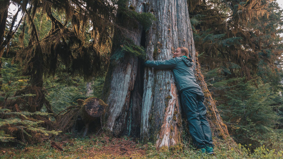 Young Woman Hugging Tree At Vancouver Island
