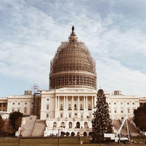 National Christmas Tree EyeEm Best Shots Streetphotography WashingtonDC Architecture