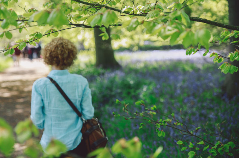 Rear view of woman walking by plants at forest