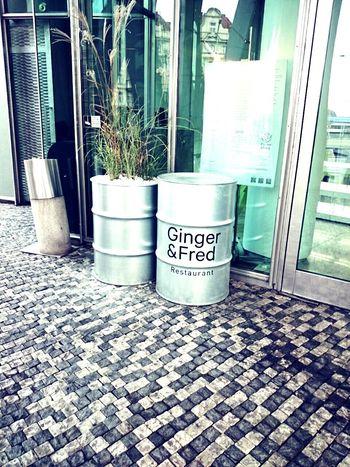 Ginger & Fred Tančící Dům