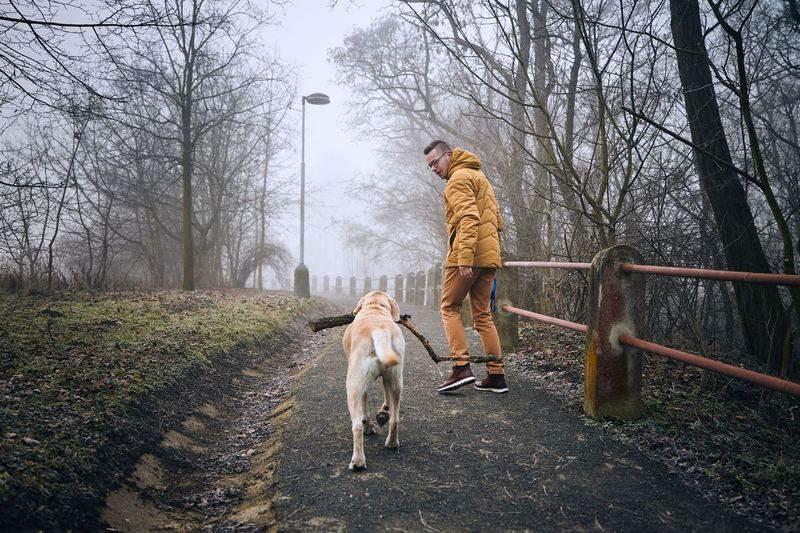 Rear view of man with dog in winter