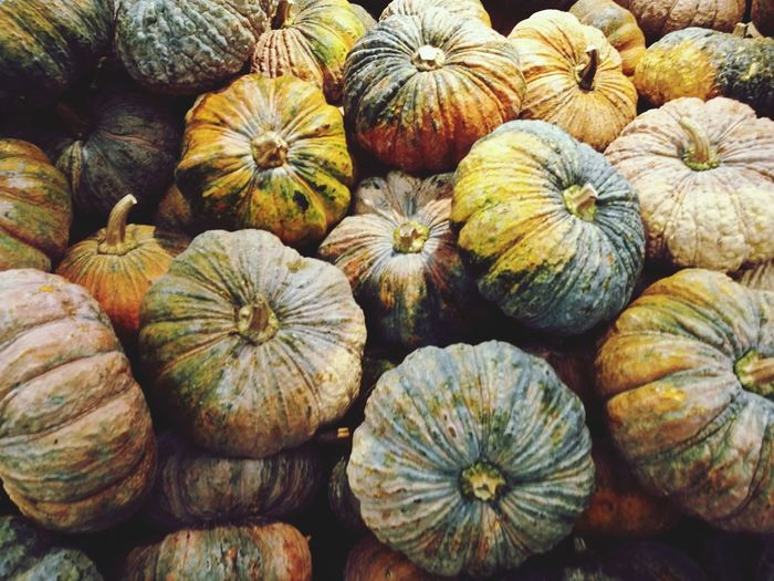 Fresh pumpkin fresh market