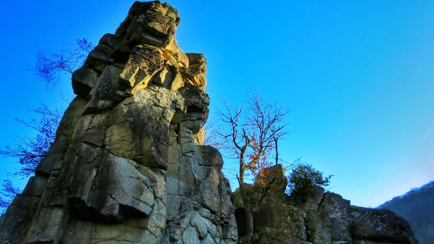Blue Sky No People Tree Statue Outdoors Day Tranquility Winter Beautiful Beauty In Nature Beautiful Colors Beautifulview Nature Canon Canonphotography Canonpowershot Plant Rock Allier Auvergne Photography Landscape