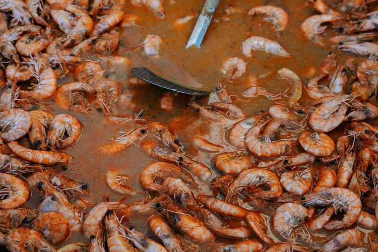 Sea Food Street Food Street Food Stall Food Prepared Food UnderSea Full Frame Backgrounds Close-up Shrimp Lobster