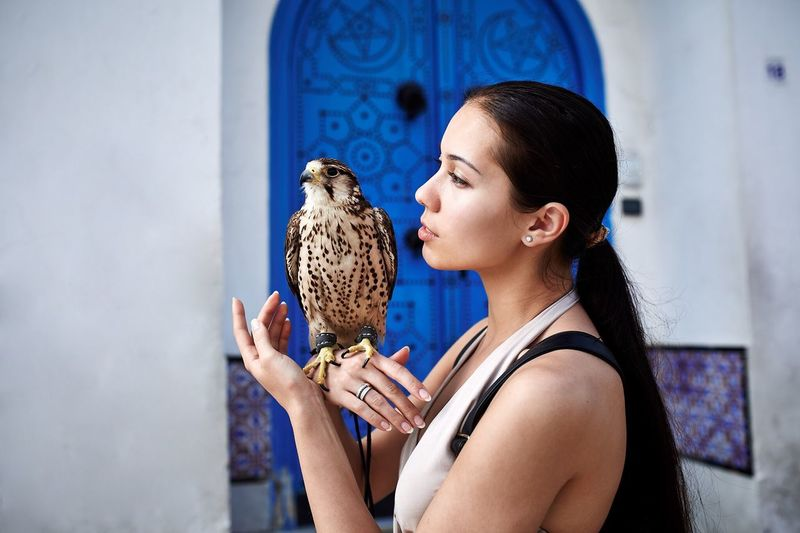 Young Woman Holding A Falcon