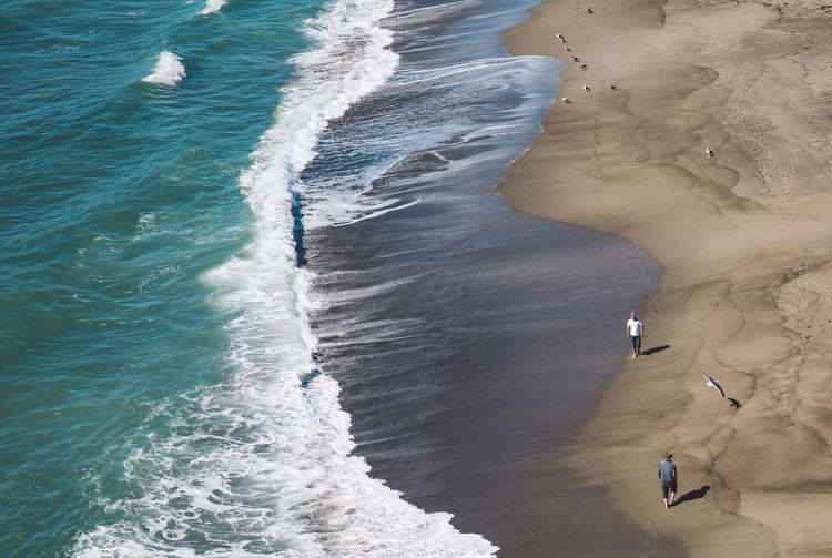 Malibu Point Dume Aerial View Animal Themes Beach Beauty In Nature Bird Day High Angle View Horizon Over Water Mammal Nature No People Outdoors Sand Scenics Sea Shore Strangers Tranquil Scene Vacations View From Above Water Wave Breathing Space An Eye For Travel California Dreamin