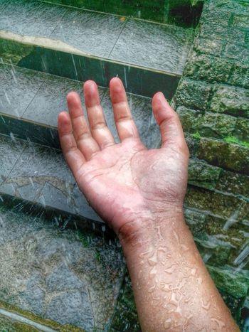 Rain fall down, Wash away my yesterday. Rainy Day Raindrops The Rain Hand Hand Of Midas Nature Hujan Ciater