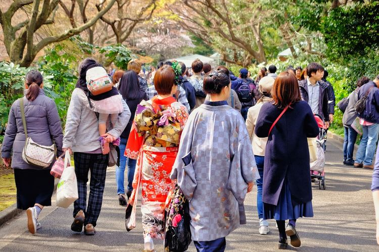 Large Group Of People Togetherness Walking Women Real People Outdoors Tree Leisure Activity Day Men Lifestyles People Crowd Nature Full Length Adults Only Adult Japan Asian  Cherry Blossoms Kimono Ueno Park
