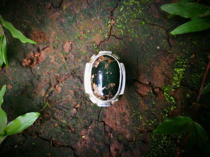 Leaf No People Day Nature Outdoors Close-up Green Gem Akik Ring Exotic Stone Gemstones Lieblingsteil