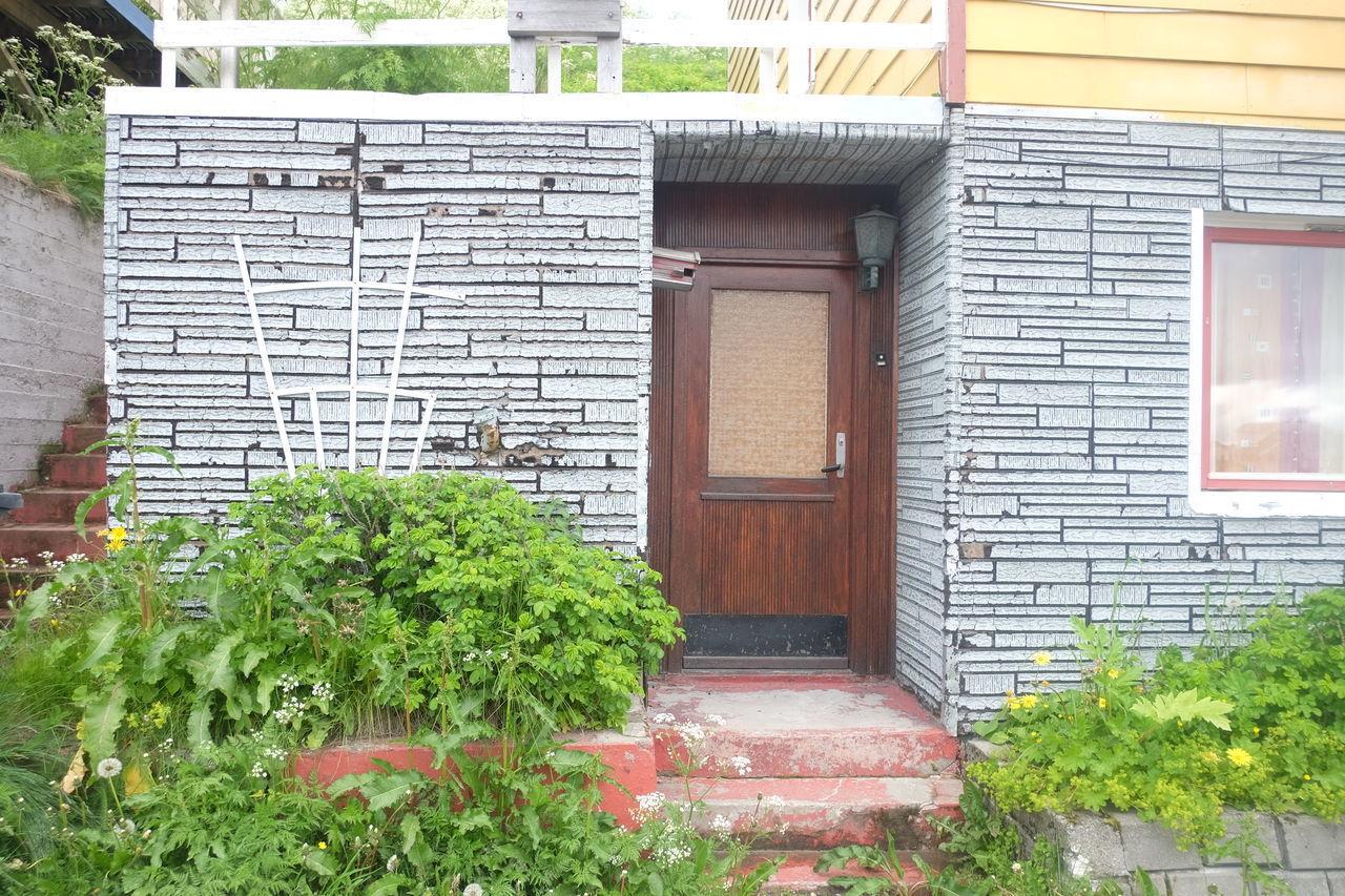 PLANTS OUTSIDE HOUSE