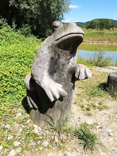 Frosch Holz Holzskulptur Holzkunst Nature Natur Naturschutzgebiet Naturschutz Froschkönig No People Day Sculpture Field Grass Nature Outdoors Statue Animal Themes Sky