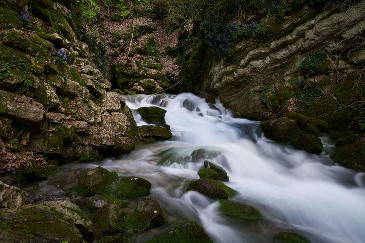 River birth,