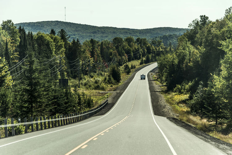 Canada North America Road Tree Transportation Plant Direction Sign Marking The Way Forward Road Marking Symbol Nature No People Mountain Diminishing Perspective Day Forest Asphalt Non-urban Scene Country Beauty In Nature Outdoors Dividing Line