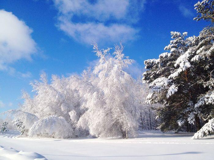 Traveling Canada Quebec Snow ❄ Deepfreeze Winter Wonderland Winter Snow
