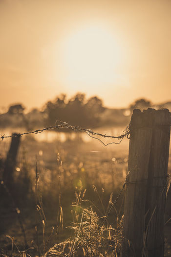 Barbed wire fence on field against sky during sunset