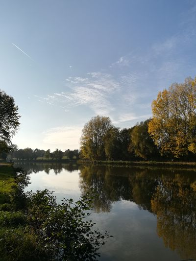 Étang communale de soignies Tree Water Lake Autumn Reflection Astronomy Sky Cloud - Sky Reflection Lake Woods Tranquil Scene Tranquility Calm Non-urban Scene Majestic Scenics Lakeshore Standing Water Idyllic