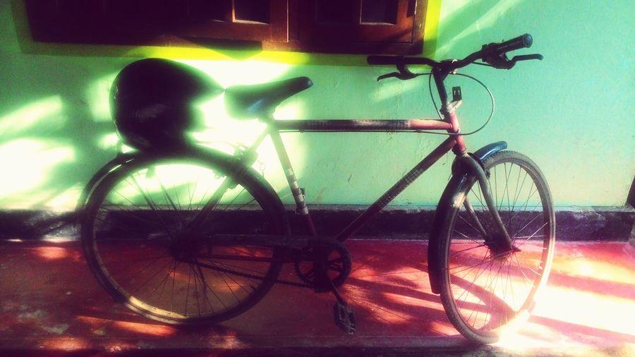 Bicycle Morning