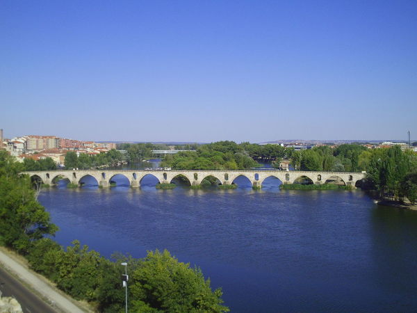Zamora old travel Arch Architecture Beauty In Nature Bridge - Man Made Structure Built Structure Clear Sky Connection Copy Space Day History Nature No People Outdoors Travel Destinations Tree Water Zamora Zamora, Spain