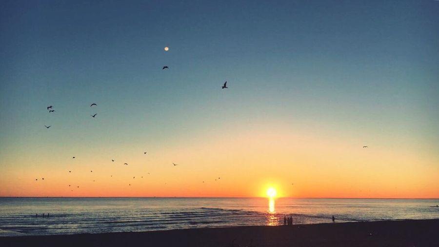 EyeEmNewHere Beach Sunset Sea Sky First Eyeem Photo