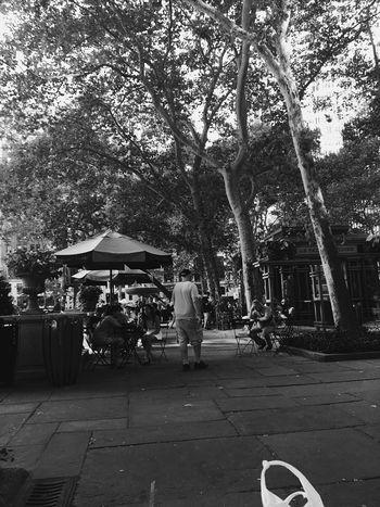 Bryantpark NYC Photography