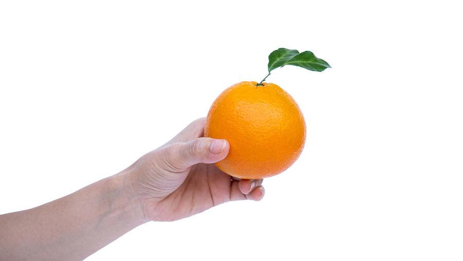 Cropped image of hand holding orange against white background