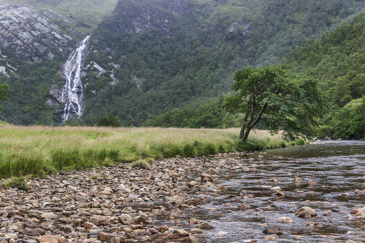 Fort William Travel Destination Fort William Ben Nevis And Glen Coe National Scenic Area Glen Nevis Highlands Scottish Highlands Scottish Natural Heritage Argyll River Nevis Steall Waterfall Steall Falls Waterfall Falling Water Flowing Water Flowing Water Power In Nature Long Exposure Blurred Motion Viewpoint Nature Reserve Natural Park Protected Area Natural Heritage National Scenic Area Glen Valley Valley View Valleyside Scenics - Nature Scenic View Idyllic Beauty In Nature Landscape Panorama Panoramic View Nature Motion Tree Plant Growth Grass Grassland Green Color Green Nature Mountain Mountain View Mountainscape Daylight Pebbles