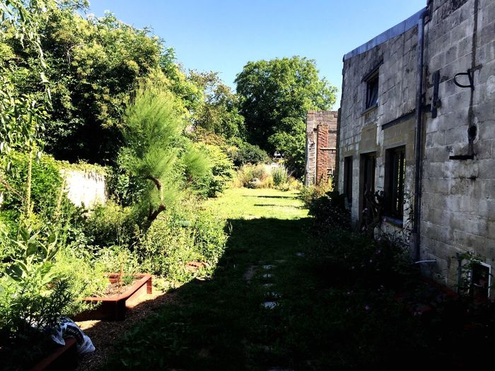 Illuminati Garden Sunshine Pleinair First Eyeem Photo