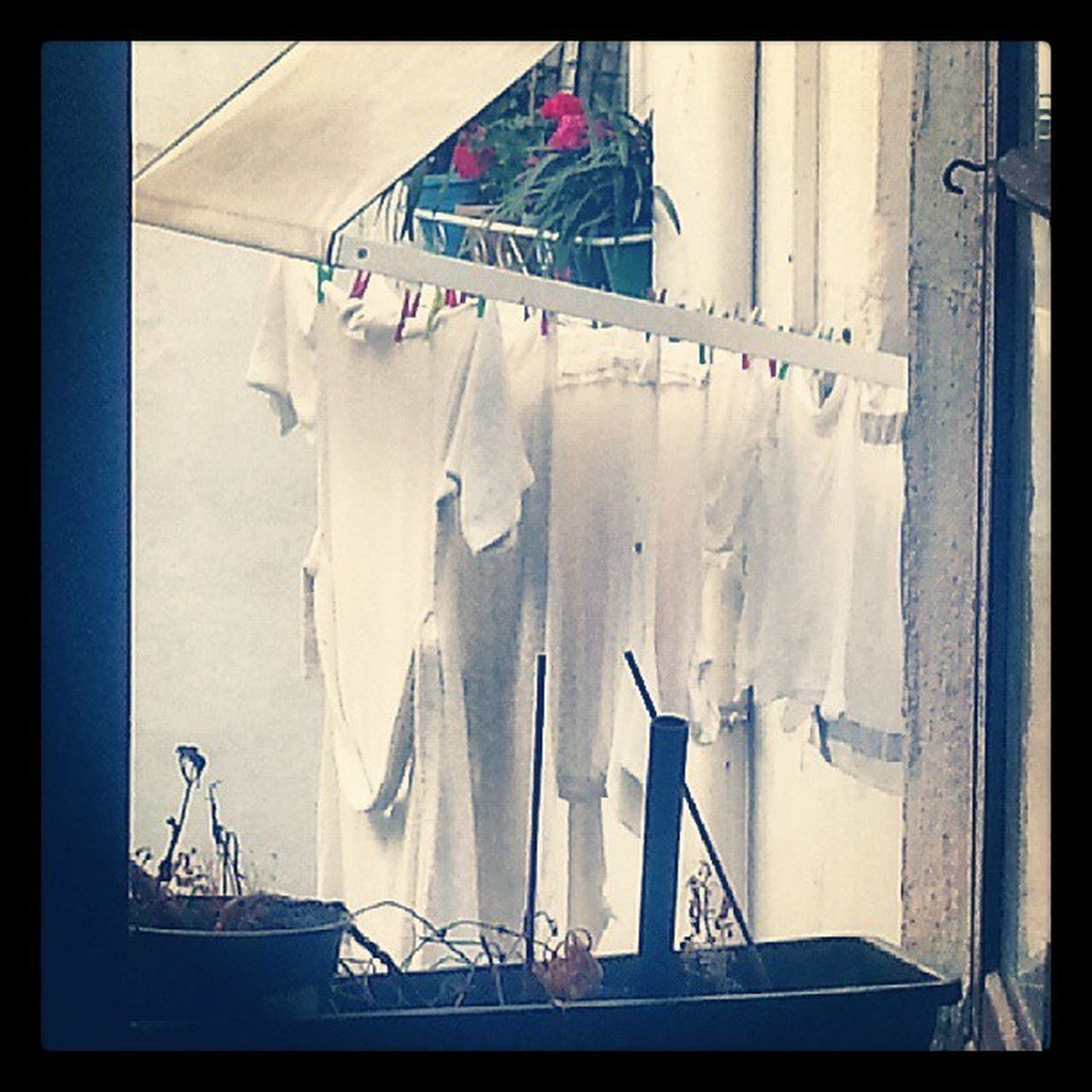 hanging, drying, clothesline, clothespin, coathanger, indoors, no people, day, close-up