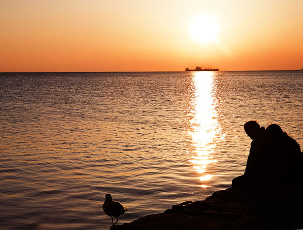 Couple sitting on a pier with seagull silhouette, sunset sunlight on sea waters and red sky Beauty In Nature Bird Couple Horizon Over Water Idyllic Nature One Animal Orange Color Outdoors People Pier Reflection Scenics Sea Seagull Silhouette Sky Summer Sun Sunlight Sunset Tranquil Scene Tranquility Travel Destinations Water