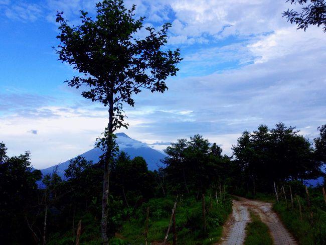 Nature Mountain Guatemala Antigua Guatemala Hobbitenango VolcanDeAgua Naturalesa