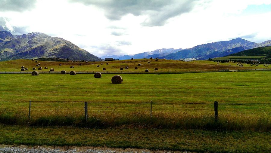 Rural. Queenstown, New Zealand NZ Landscape Landscapes Scenic EyeEm Gallery Farm Life