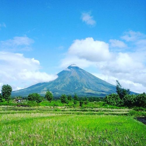 This could be my first photo to upload here in EyeEm. It's my first time and I know this picture could be so picture since this photo was taken during our travel in Bicol. The place was really great especially watching the perfect shape of the Mt. Mayon Volacano. Beauty In Nature Bicol BIcol Adventure Landscape Mountain Mt. Mayon Outdoors Volcano First Eyeem Photo